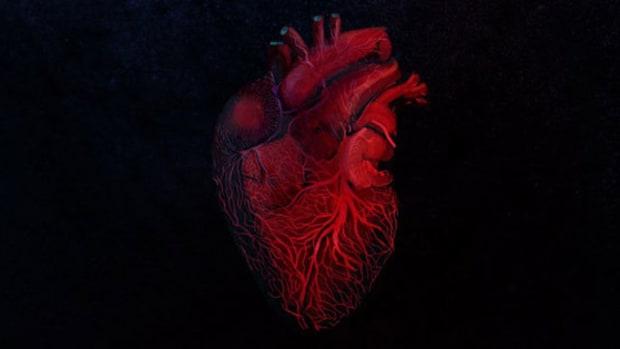 mick-jenkins-the-healing-component-album-review.jpg