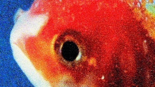vince-staples-big-fish-theory-1L.jpg