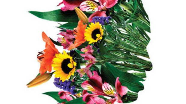 decora-flowers.jpg