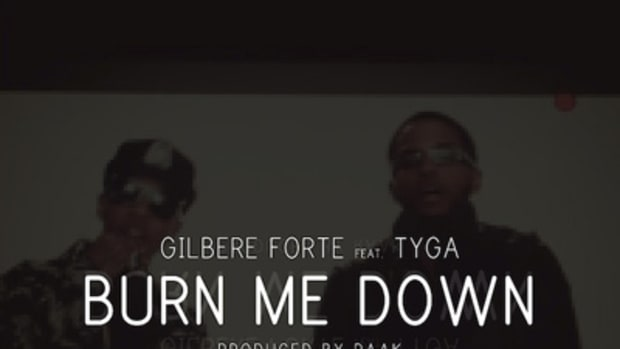 gilbereforte-burnmedown.jpg