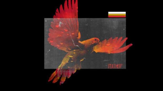 xavier-clark-feathers.jpg