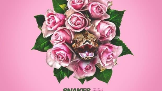 dej-loaf-snakes.jpg