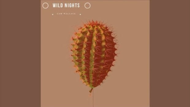 cam-wallace-wild-nights.jpg