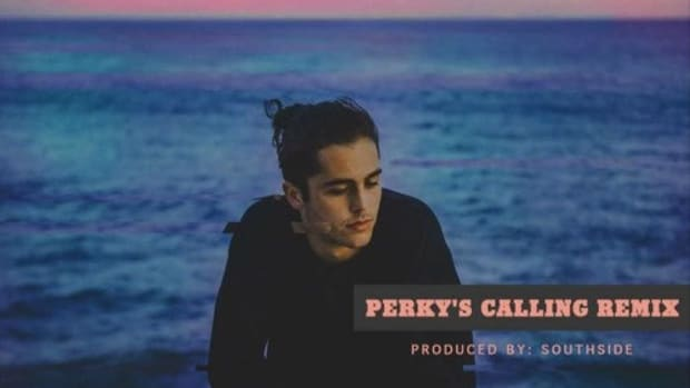 skate-maloley-perkys-calling-remix.jpg