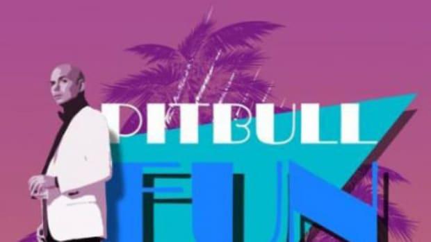 pitbull-fun.jpg