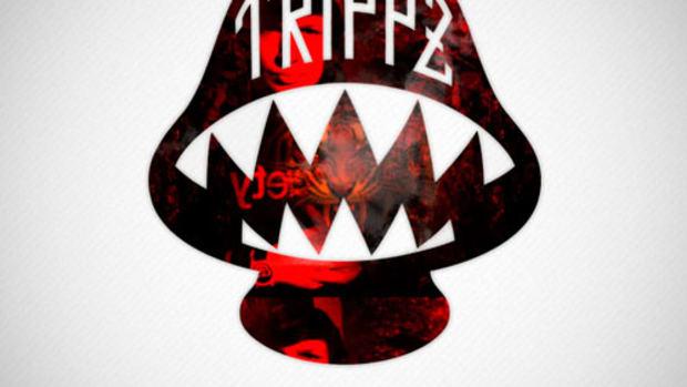 trippzm-theadventures.jpg