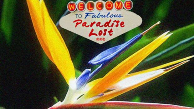 rm-paradiselost.jpg