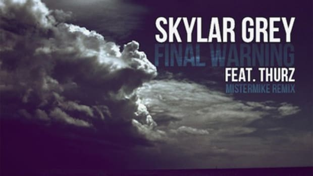 skylargrey-finalwarningrmx.jpg