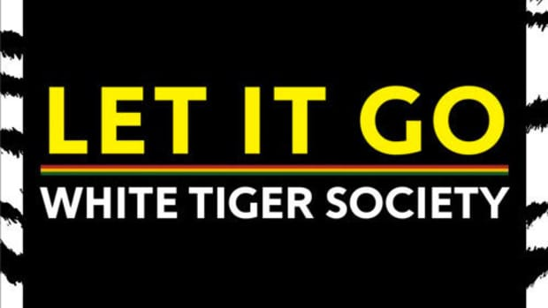 white-tiger-society-let-it-go.jpg