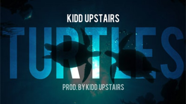kiddupstairs-turtles.jpg