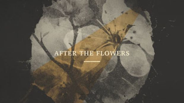 lorange-afterflowers.jpg