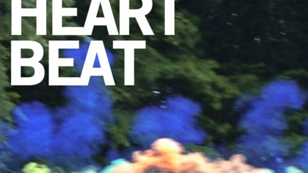 ninasky-heartbeat.jpg