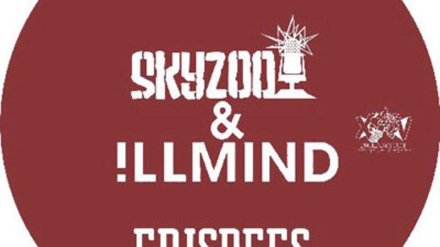 skyzoo-frisbees.jpg