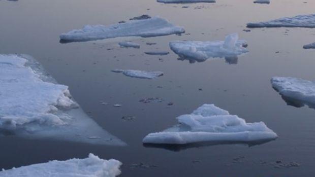 allan-kingdom-froze.jpg