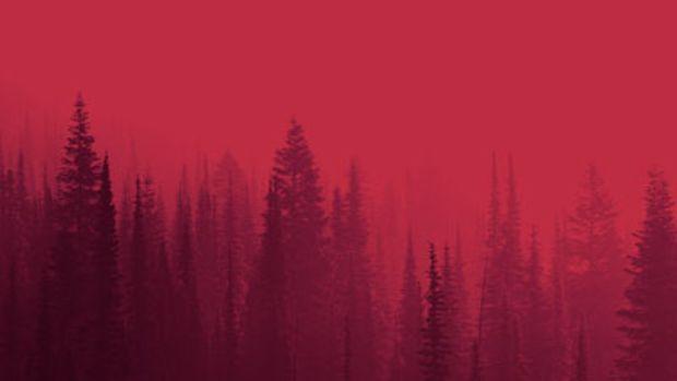 ibn-inglor-wildfire.jpg