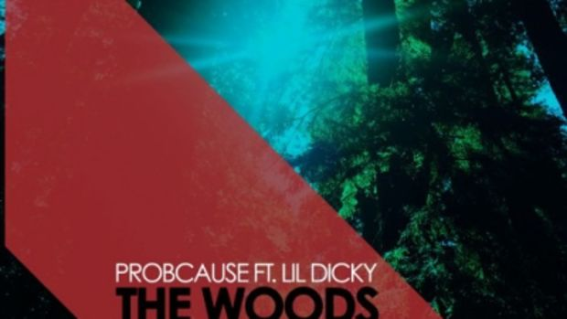 probcause-the-woods-remix.jpg