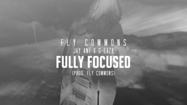 fly-commons-fully-focused.jpg