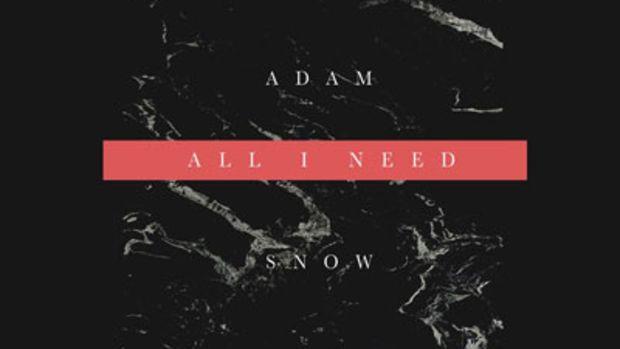 adamsnow-allineed.jpg