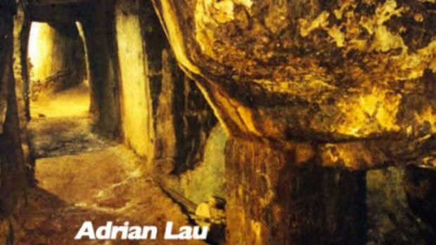 adrian-lau-gold.jpg