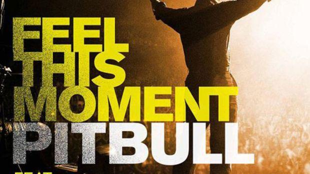 pitbull-feelthismoment.jpg
