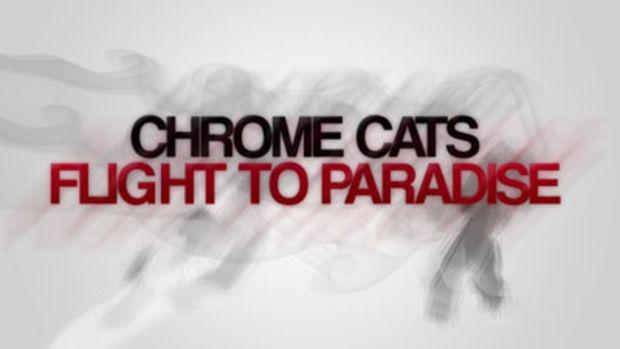 chromecats-flighttoparadise.jpg