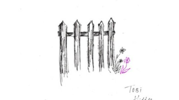tobi-hidden-fences.jpg
