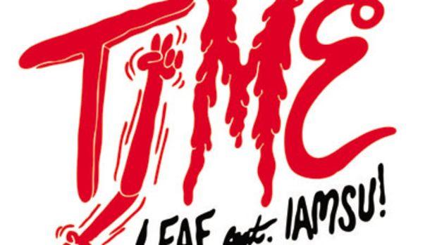 leaf-timermx.jpg