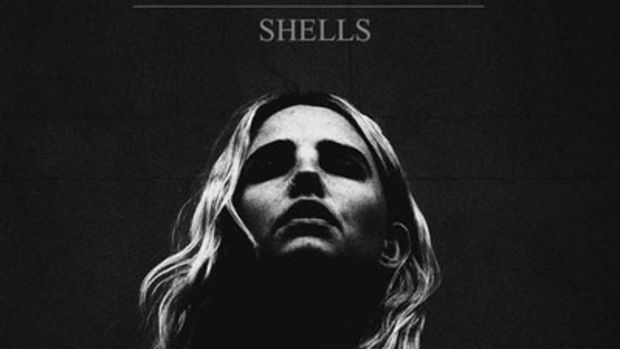 laurel-shells.jpg