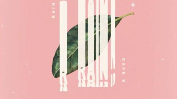 dave-b-rain.jpg