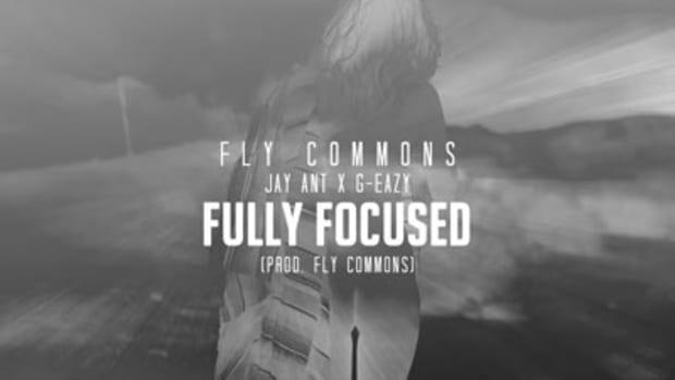 fly-commons-fully-focused.jpg