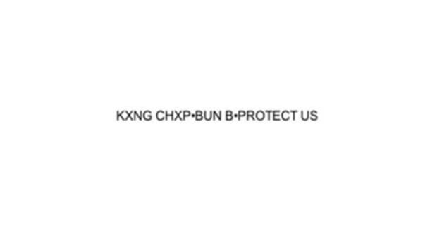 king-chip-protect-us.jpg