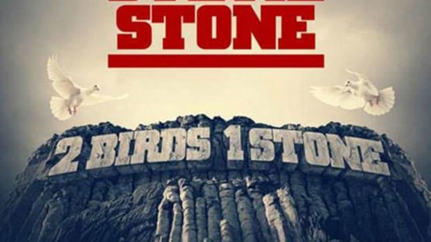 steviestone-2birds1stone.jpg