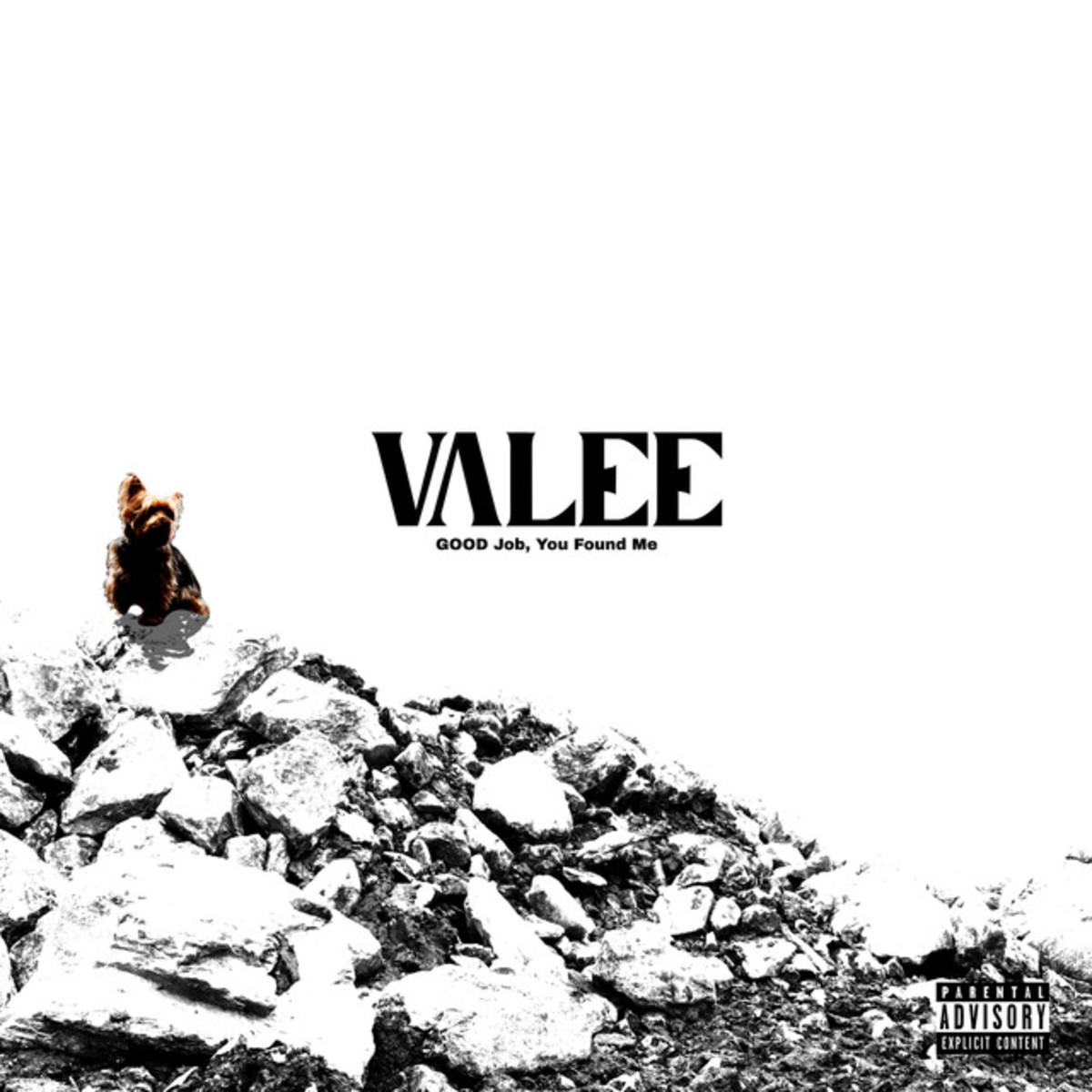 Valee Good Job You Found Me EP