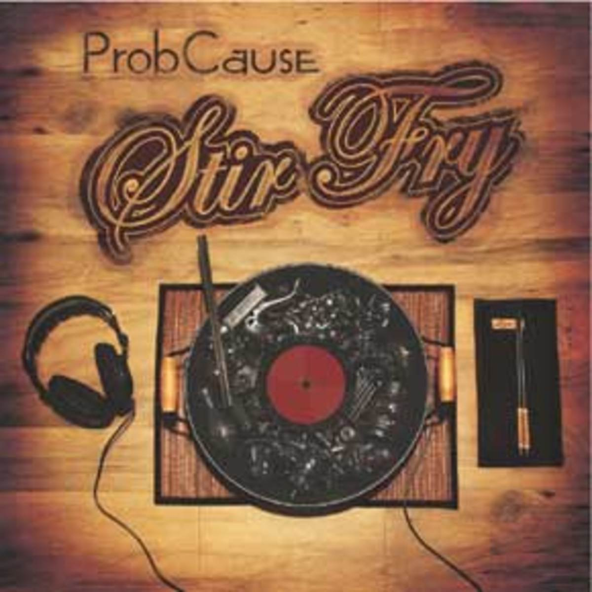 probcause-stir-fry-front.jpg