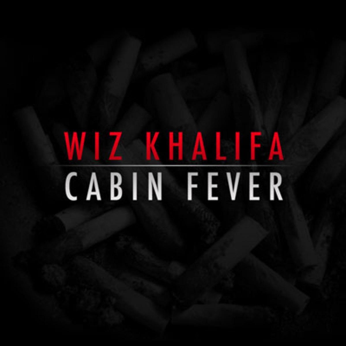 wiz-cabin.jpg