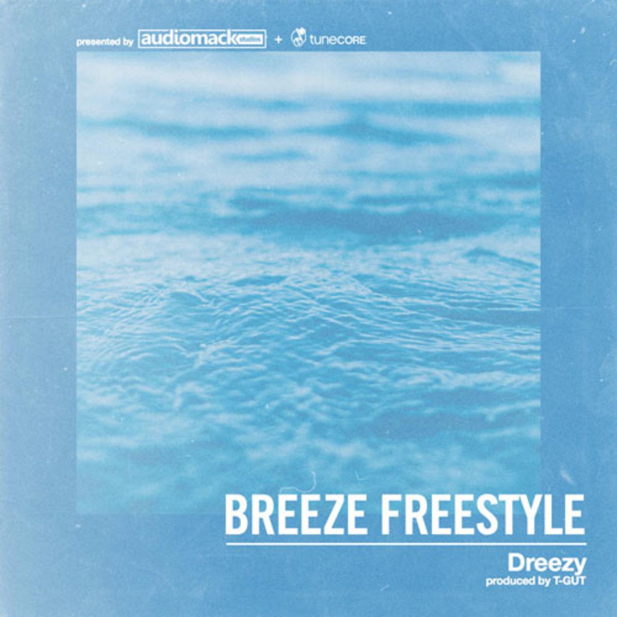 dreezy-breeze-freestyle-art.jpg