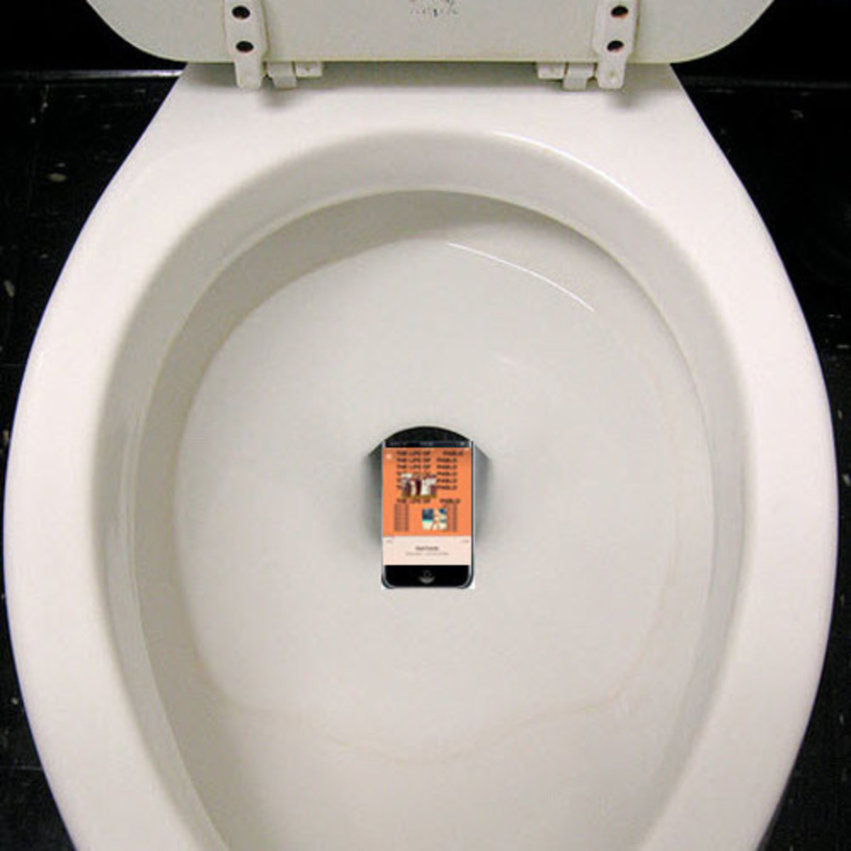 tlop-in-the-toilet.jpg