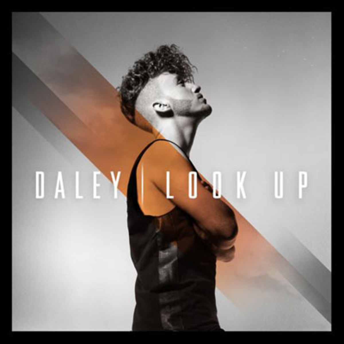 daley-lookup.jpg