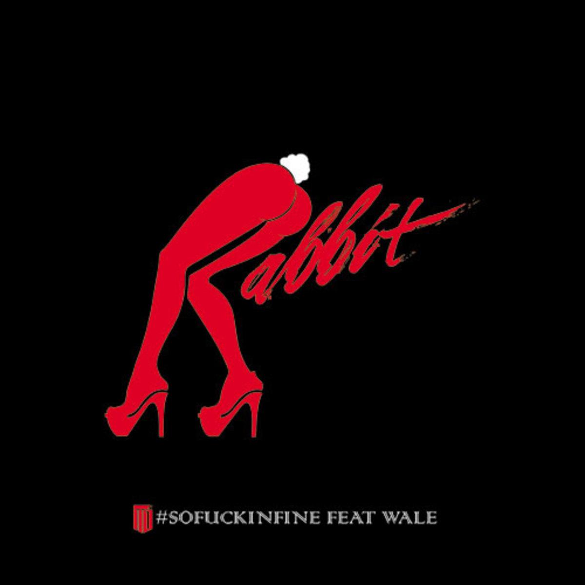 rabbit-sofinfine.jpg
