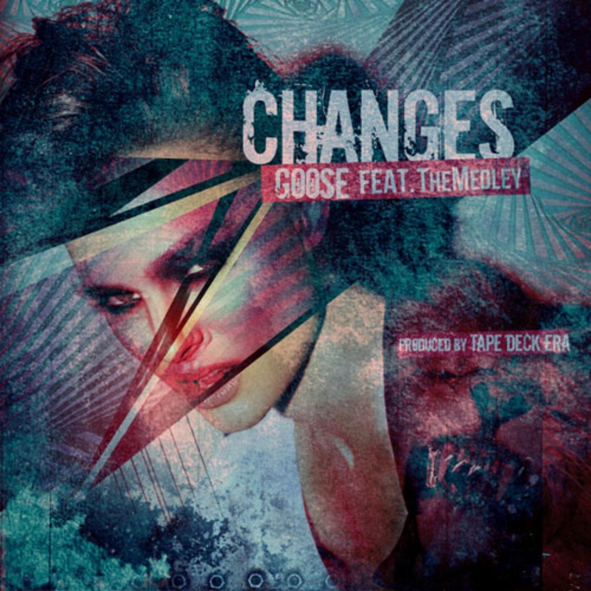 goose-changes.jpg