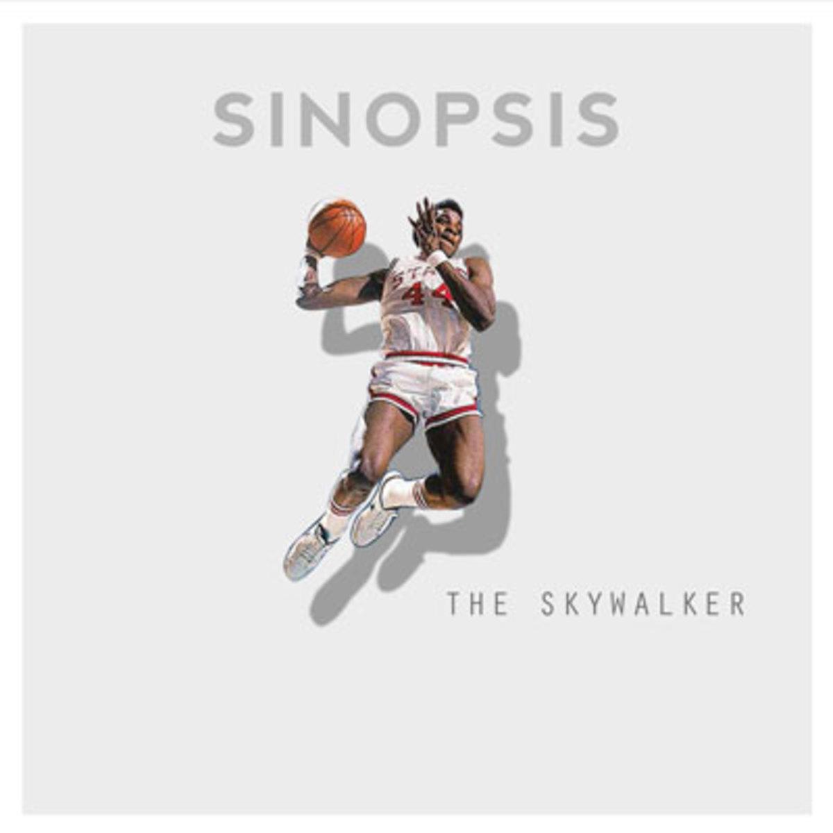 sinopsis-theskywalker.jpg