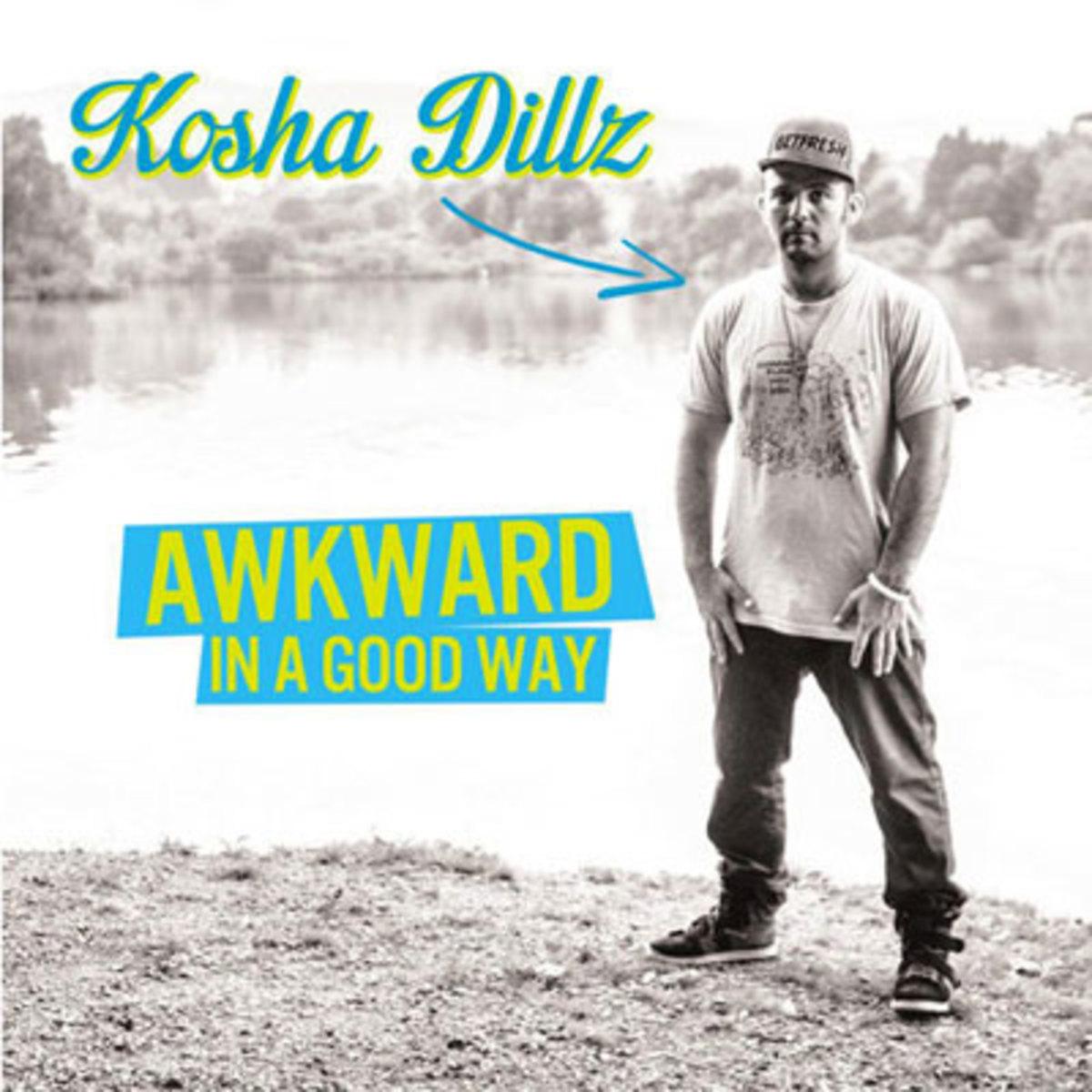 koshadillz-awkward.jpg