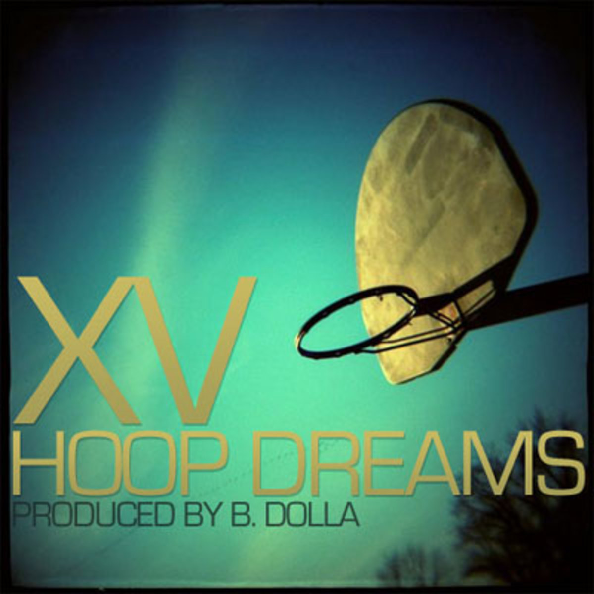 xv-hoopdreams.jpg