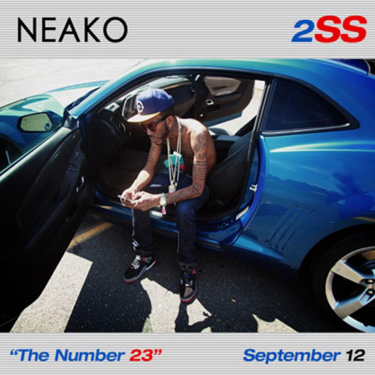 neako-2ss.jpg