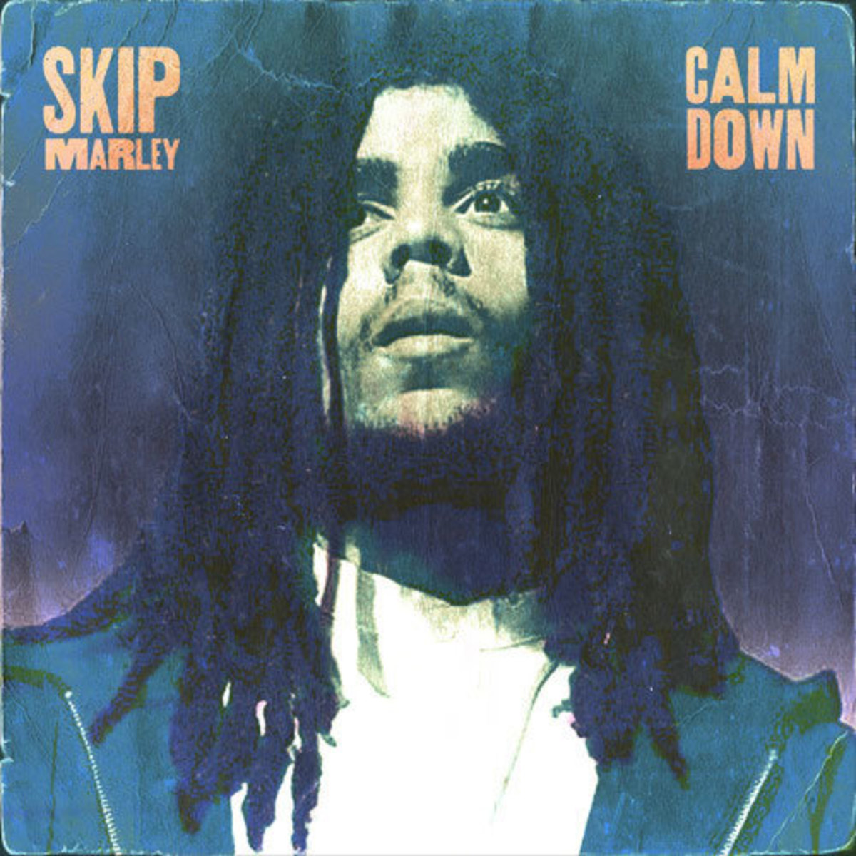skip-marley-calm-down.jpg