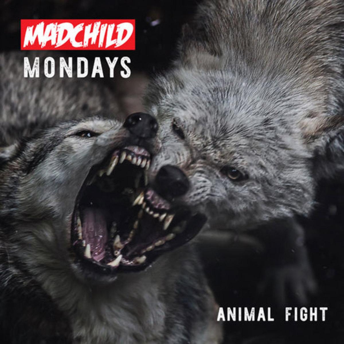 madchild-animal-fight.jpg