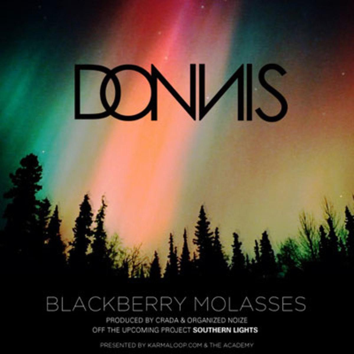 donnis-blackberrymolassas.jpg