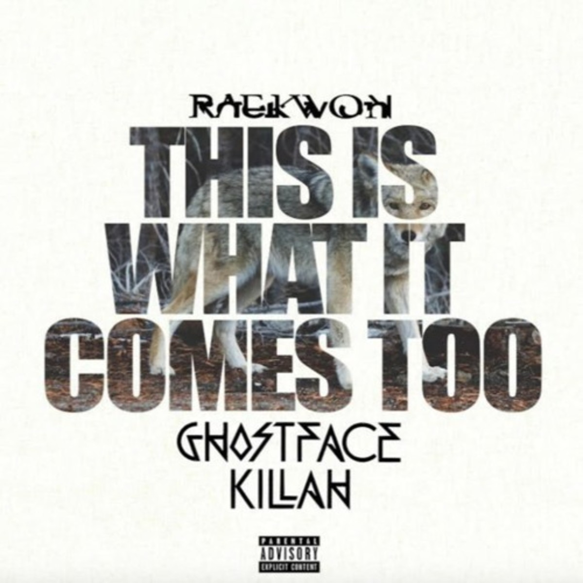 raekwon-this-is-what-it-comes-to-remix.jpg