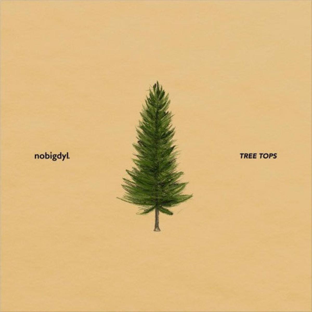 nobigdyl-tree-tops.jpg