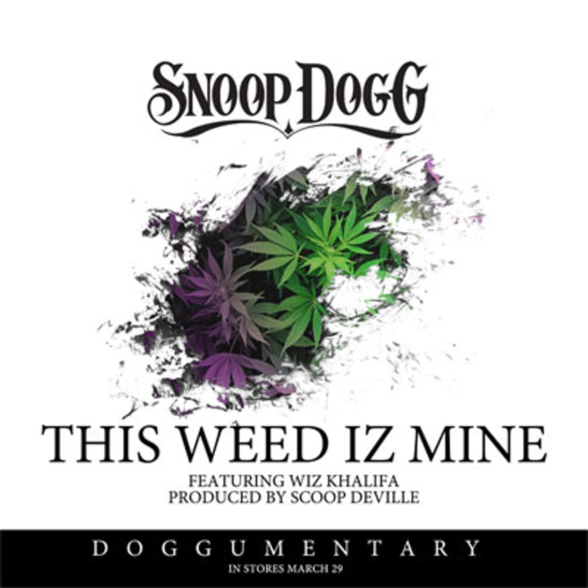 snoopdogg-theweedizmine.jpg